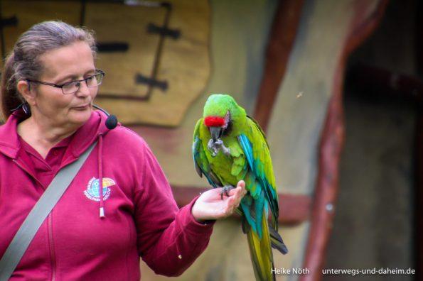 Vogelpark Marlow (48)